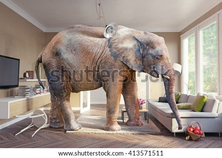 Big elephant and the basket of apples  in the living room. Photo combination and cg elements - stock photo