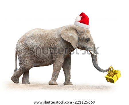 Big elephant with santa's cap delivering christmas gifts. - stock photo