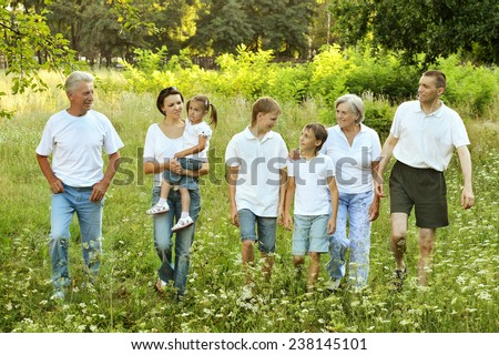 Big friendly family walking together in the summer - stock photo