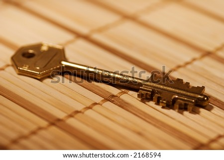 Big gold key from the doors on the wood