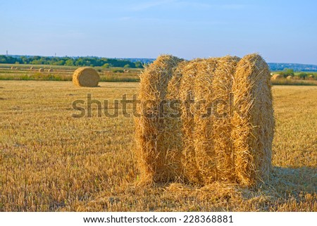 Big hay rolls on a background of blue sky
