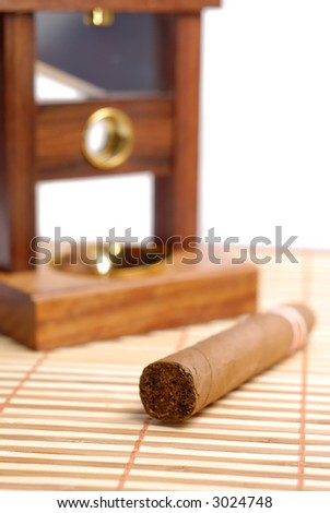 Big indian cigar near cutting equipment over white background - stock photo
