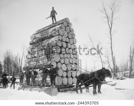 Big load of logs on a horse drawn sled in Michigan, ca. 1899. - stock photo