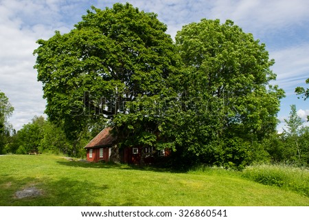 Big oak tree and a old cabin - stock photo