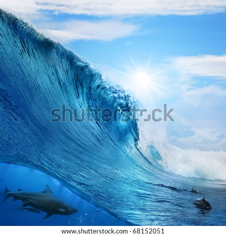 big ocean wave breaks under sun light with cloudy sky. Big bull-shark hunting underwater and two dolphins playing at surface - stock photo