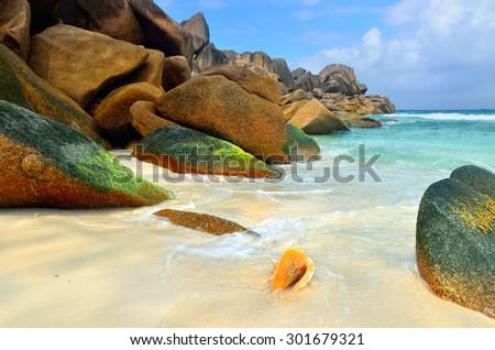 Big orange shell on the sandy beach against rocky background. Seychelles, La Digue, Anse Cocos beach - stock photo