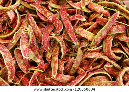 Big pile of Cranberry Beans at the farmers market