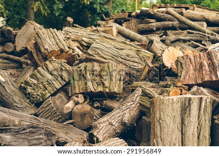 Big pile of felled logs and stumps is outdoors - stock photo