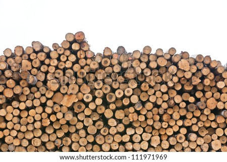 Big pile of logs isolated on white background - stock photo