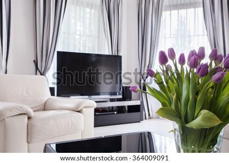 Big plasma TV in modern living room - stock photo