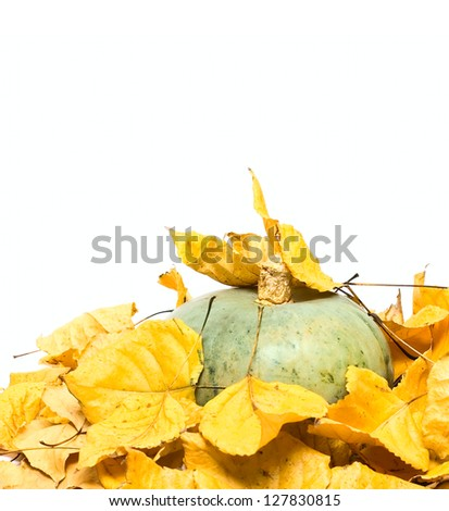 Big pumpkin and dry leafs isolated on white - stock photo