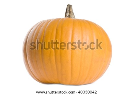 Big Pumpkin Isolated on White