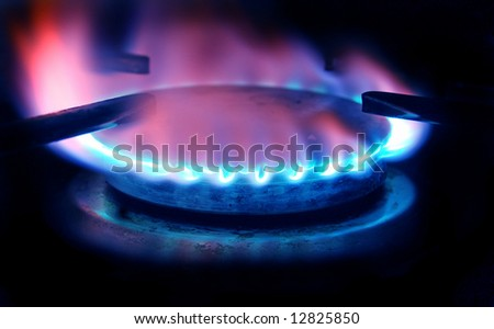 big red and blue gas stove flame isolated on black - stock photo