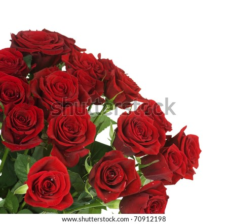 Big Red Roses Bouquet border - stock photo