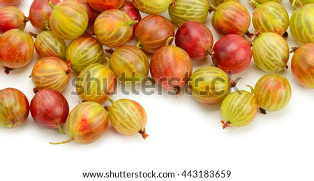 Big ripe gooseberries isolated on a white background - stock photo