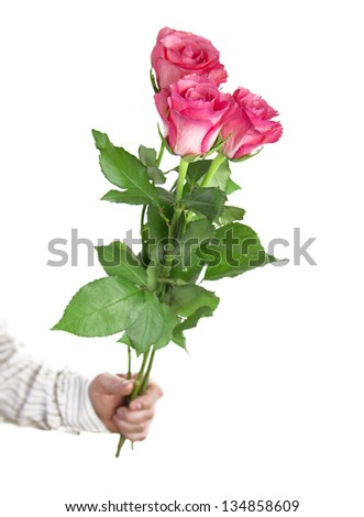 Big roses in hand, isolated on white background - stock photo