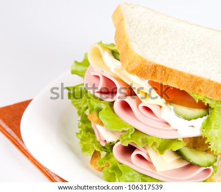 big sandwich with fresh vegetables on white plate