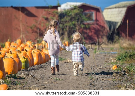 Big sister and her little brother running to choose the best pumpkin at the farm, farmhouses on the background