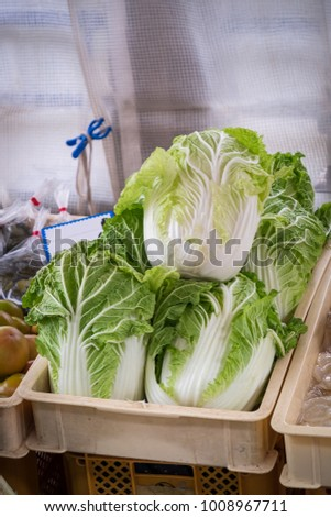 Big size chinese cabbage in the crate for sell at Takayama market, Japan.
