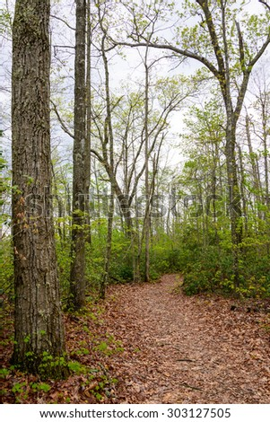 Big South Fork National River and Recreation Area - stock photo