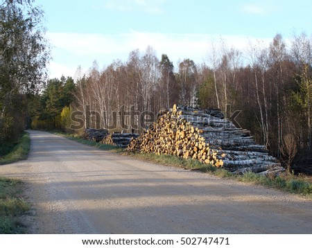 Big stack of wood logs on road side by a forest.