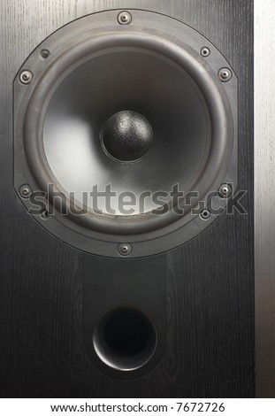 Big studio monitor loudspeaker isolated