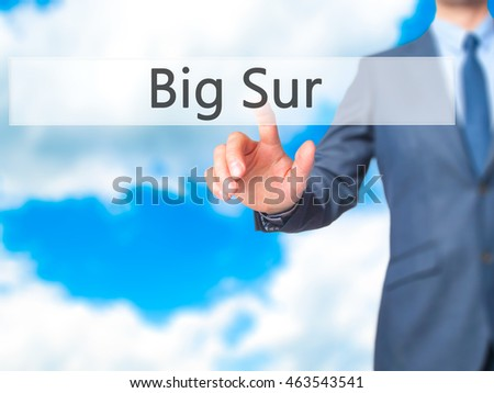 Big Sur - Businessman pressing virtual button. Business, technology  concept. Stock Photo