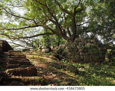 Big tree and shadow in angkor temple, great place to sit down and relax after a long day trip - stock photo