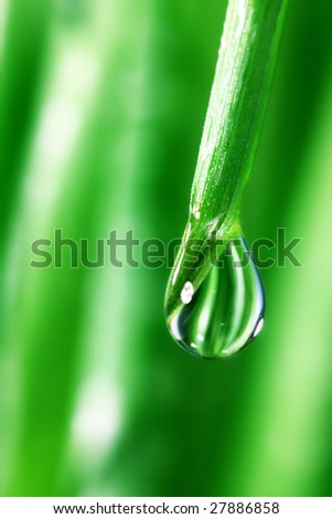 big water drop