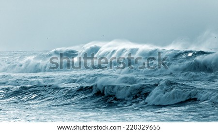 Big waves approaching the Portuguese coast in a stormy and misty day - stock photo