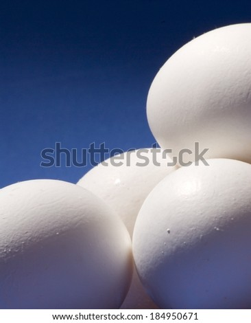 big white eggs over blue background