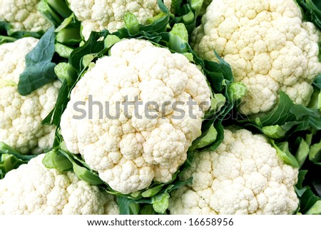 Big white organic natural and clean cauliflowers - stock photo