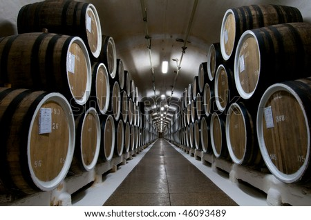 Big wine barrels in a wine cellar