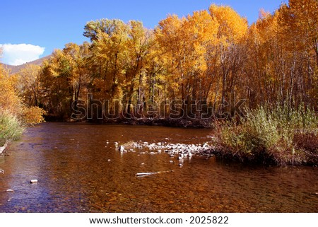 Big Wood River, autumn colors, near Ketchum Idaho - stock photo
