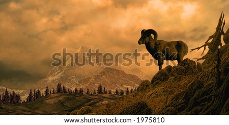 Bighorn Sheep In The Rocky Mountains / Image from an original 12x24 painting. / SW-005 - stock photo