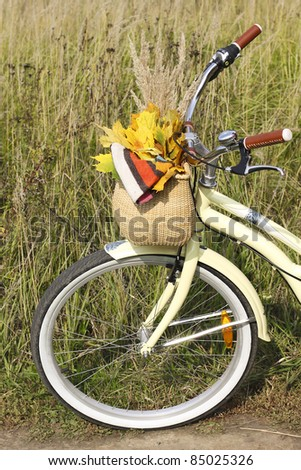 Bike basket with maple leaves and scarf - stock photo