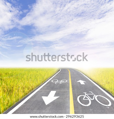 Bike lane and Rice field and the blue sky - stock photo