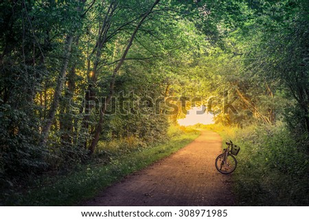 Bike on a forest trail in the morning - stock photo