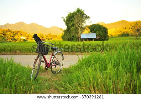 Bike Park at The Rice Field - stock photo