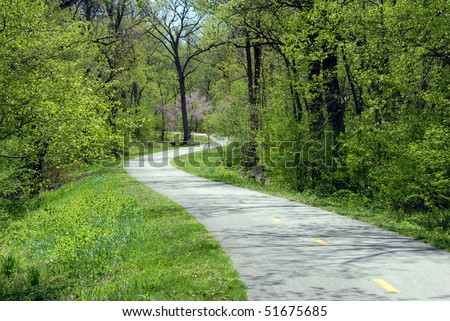 bike path winding through the woods - stock photo