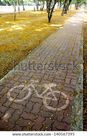 bike pavement in Sprinkled with flowers - stock photo