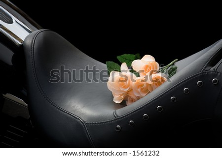bike seat over black with artificial pink roses - stock photo