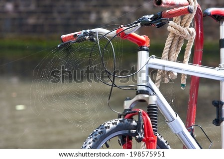 Bike with spider web from lack of use