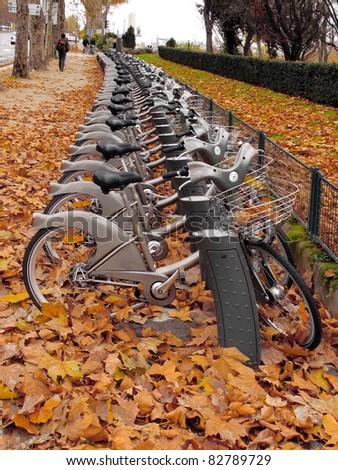 Bikes for rent. Paris in the autumn. - stock photo