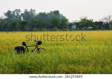 Biking to the world - stock photo