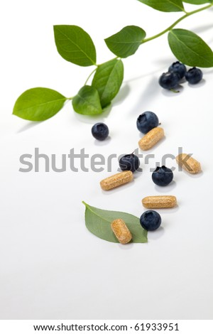 Bilberry extract pills and fresh berries and leaves best suited for alternative medicine ads - stock photo