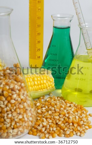 Bio fuel concept with corn and chemicals - stock photo