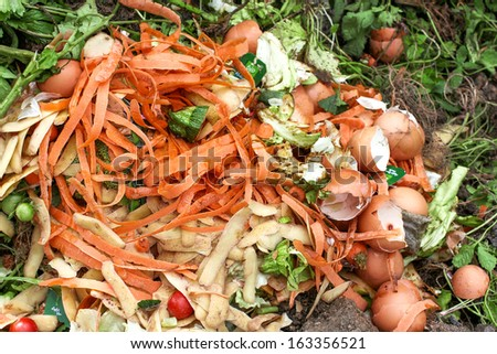 Bio-waste for compost earth - stock photo