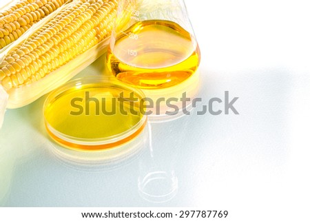 Biofuel or Corn Syrup, gasoline, energy, environmentalist - stock photo