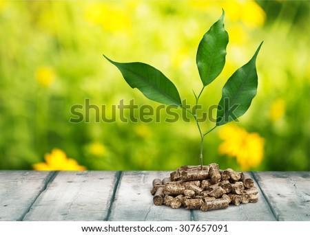 Biomass. - stock photo